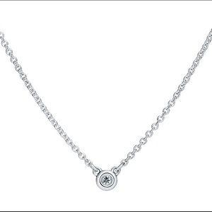 Tiffany Elsa Peretti Diamond Pendant Necklace